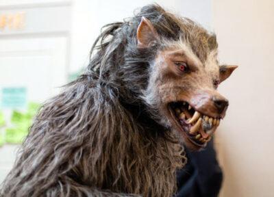 reclame-maken-weerwolf